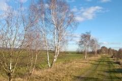 Ausreitgelände in Wennerode